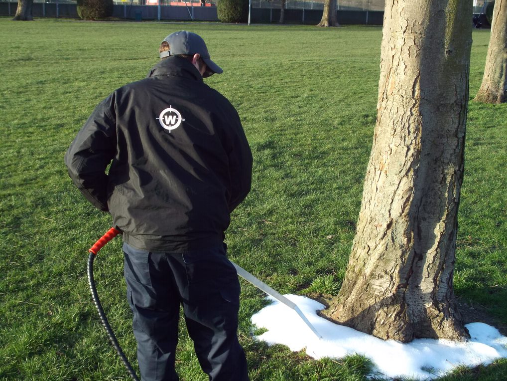 Man spraying foamstream on tree